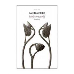Meisterwerke – Karl Blossfeldt